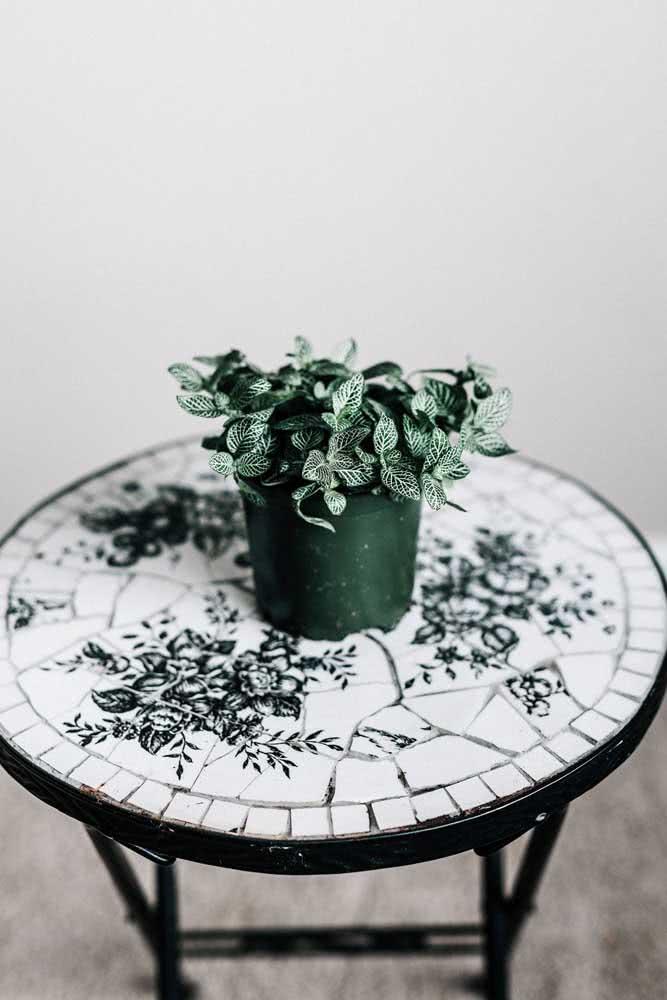 Ambientes minimalistas também combinam com fitônias