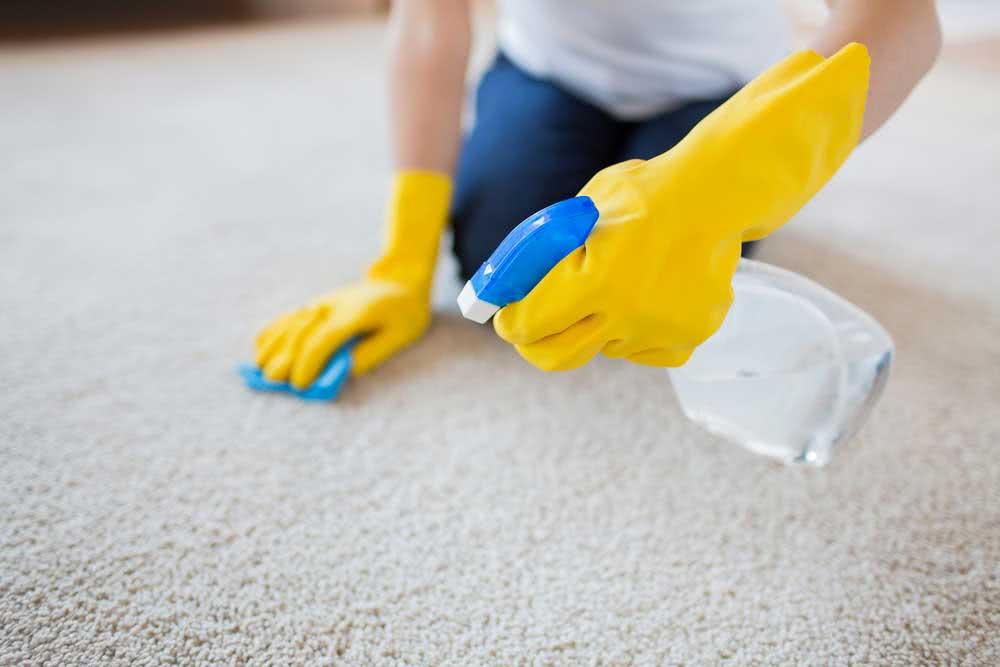 Como lavar tapete: diferentes técnicas para a limpeza de tapetes em casa