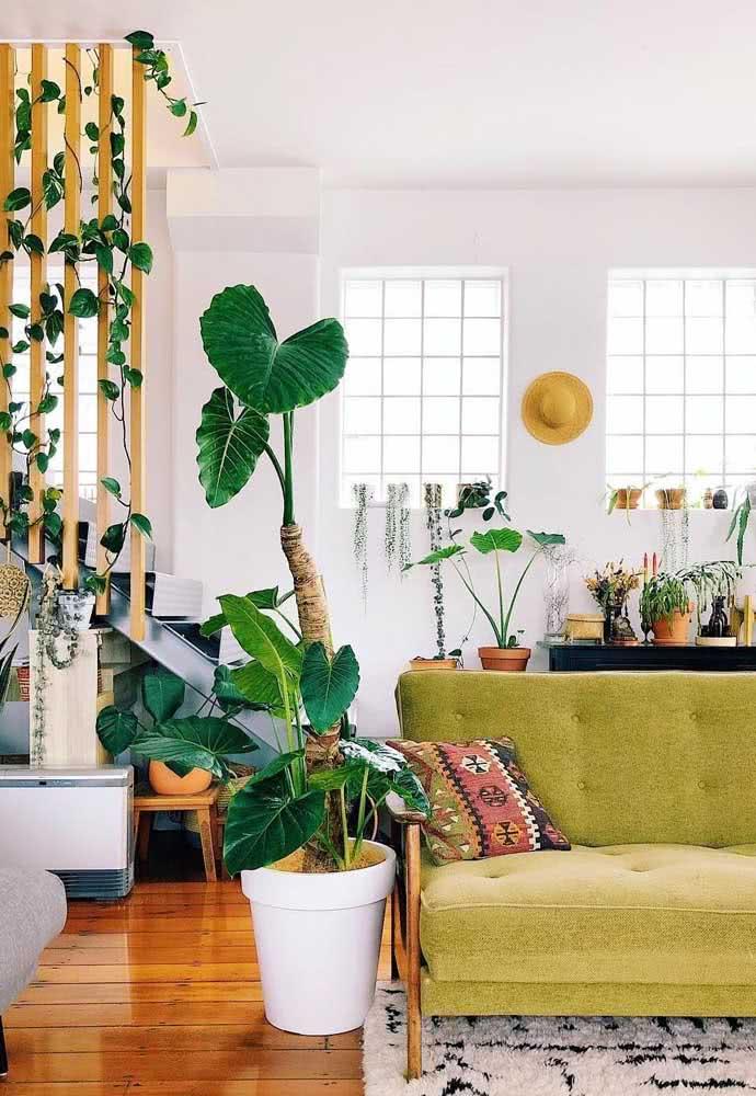 Confortável e iluminada ao lado do sofá
