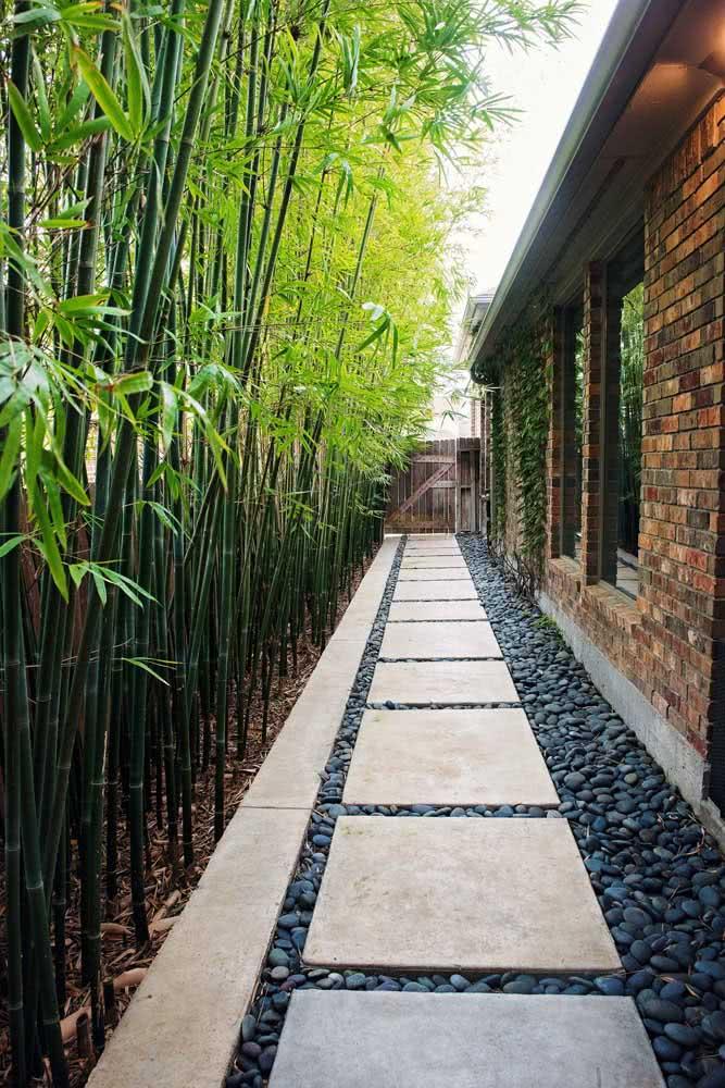 Olha que linda inspiração esse caminho ao redor da casa feito de seixos pretos e placas de cimento em companhia dos bambus