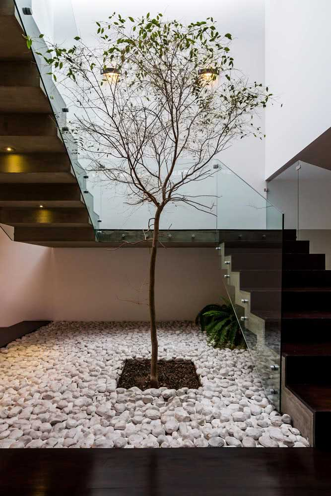 E que tal decorar o jardim de inverno com seixos brancos em tamanho grande? Chiquérrimo!