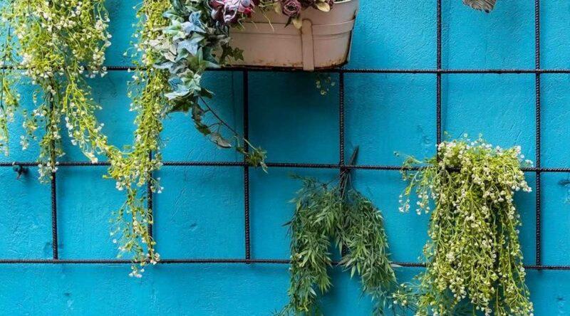 Plantas pendentes: o que são, dicas, tipos e fotos para usar na decoração
