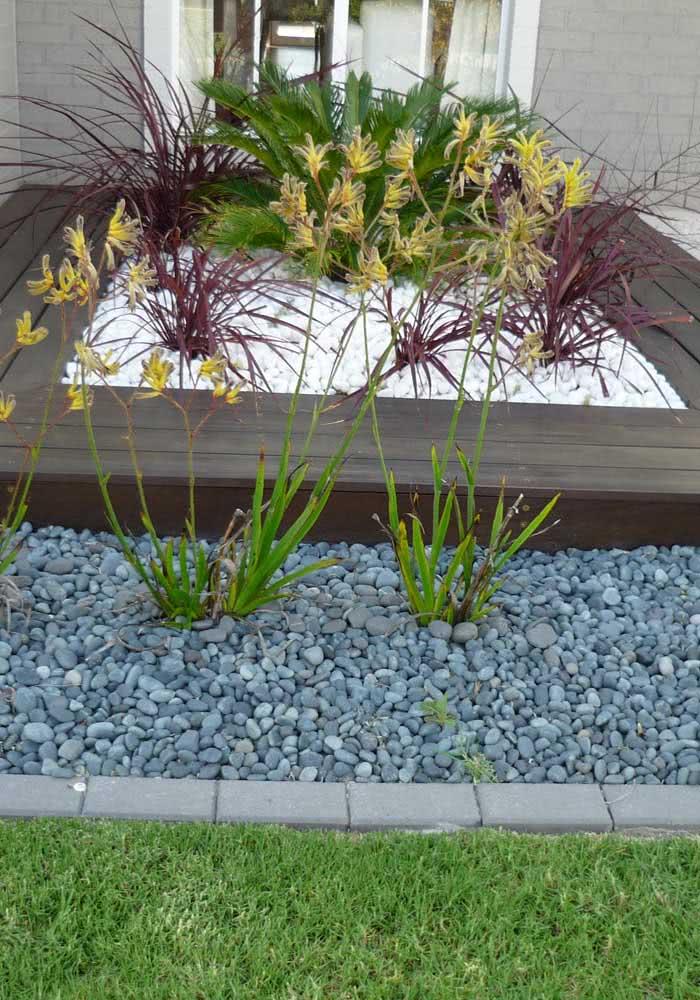 Combinação de dois tipos de pedras para montar um pequeno jardim externo.