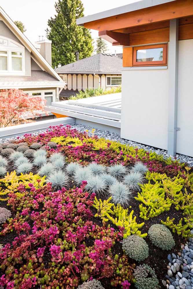 Outra técnica é utilizar as pedras ao redor da área do jardim como uma forma de proteção para as pequenas plantas.
