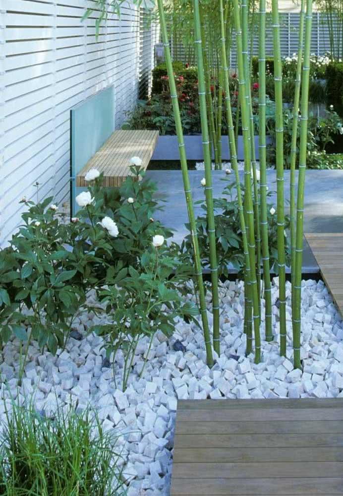 Um jardim super elegante e charmoso com pedras.