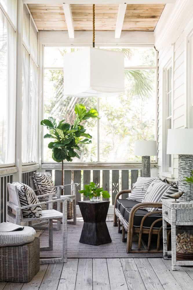 Ficus para descontrair a varanda