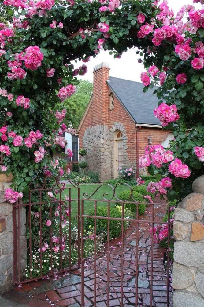 Imagina um portal de rosa trepadeira na entrada de casa? Um espetáculo!