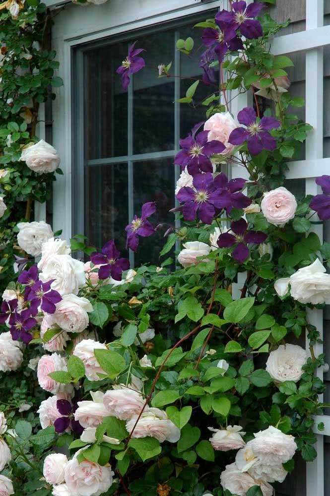 Combine flores diferentes para criar um visual ainda mais lindo