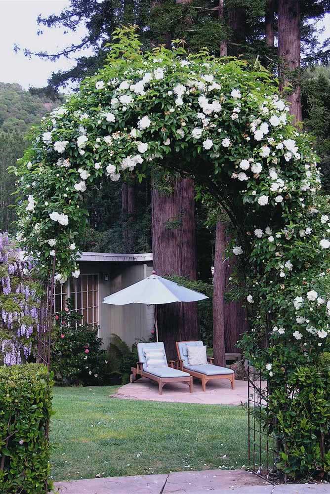 Um arco de rosas trepadeiras para recepcionar quem chega