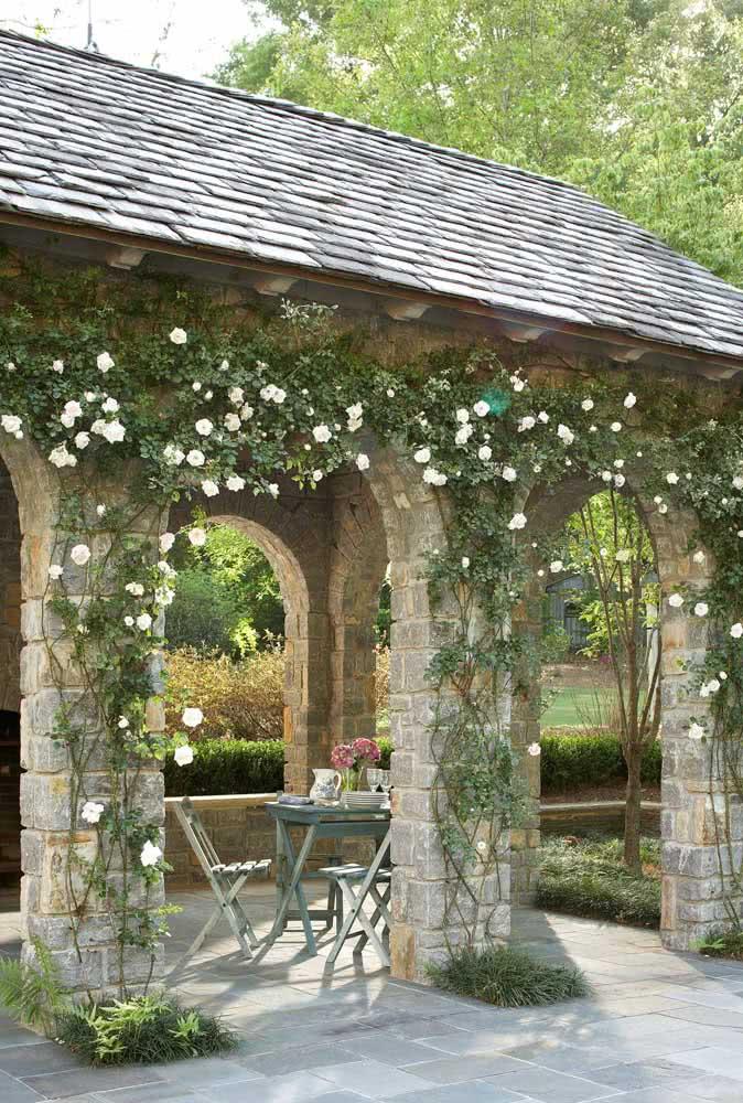 Ambientes rústicos são a cara da rosa trepadeira