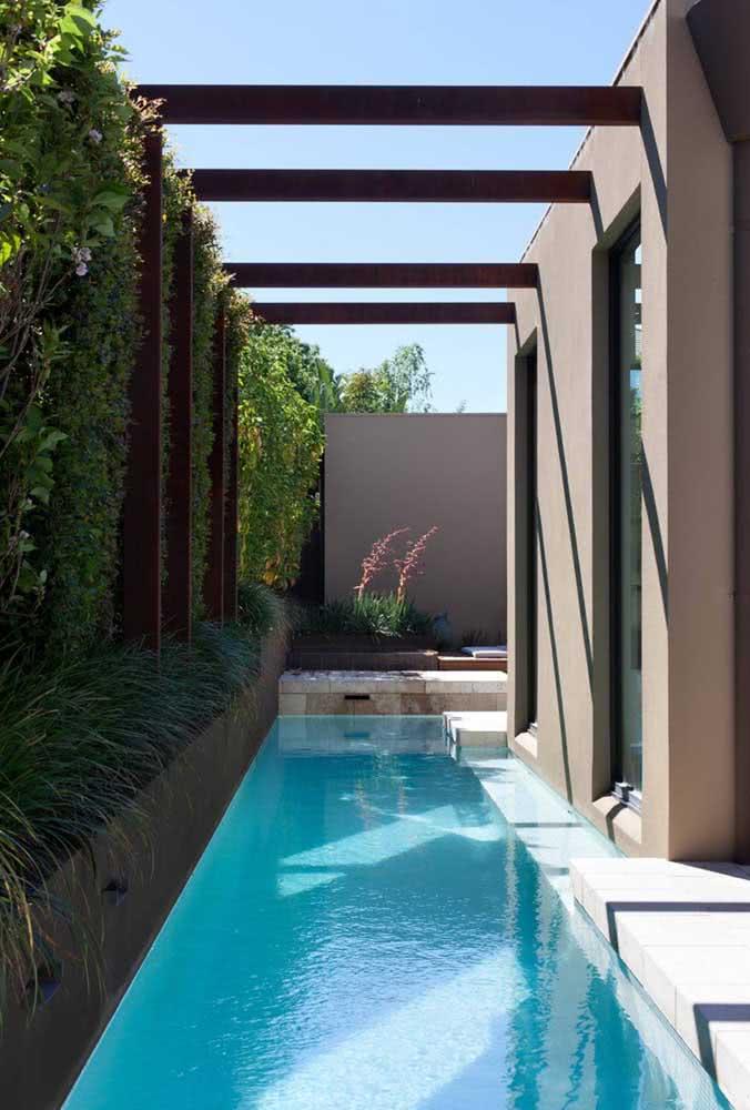 E que tal uma cerca viva de pingo de ouro na beira da piscina?