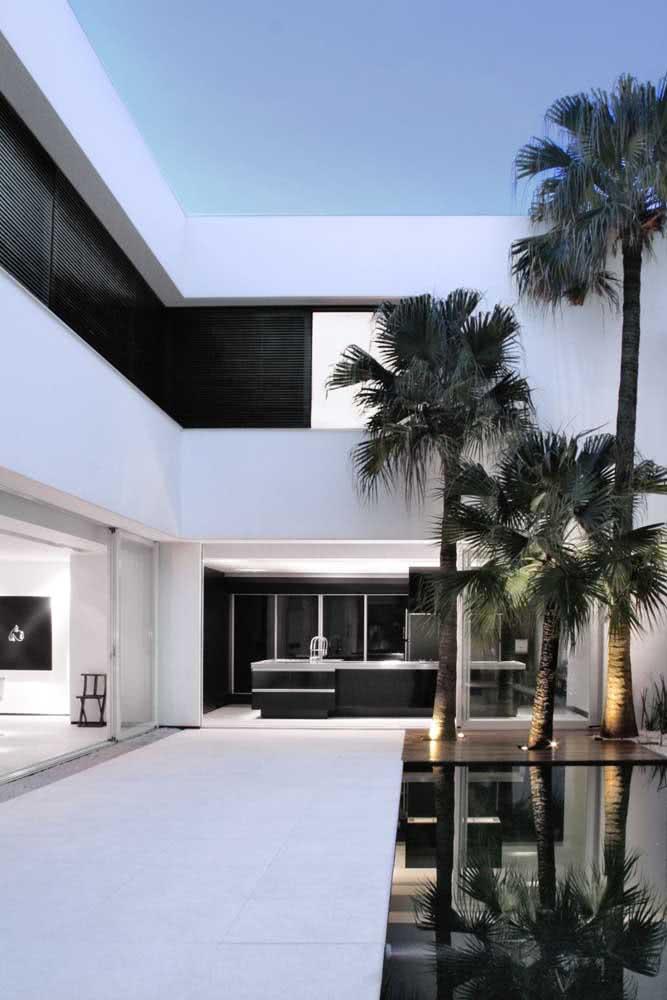 Casa moderna e minimalista com um trio de coqueiros de jardim