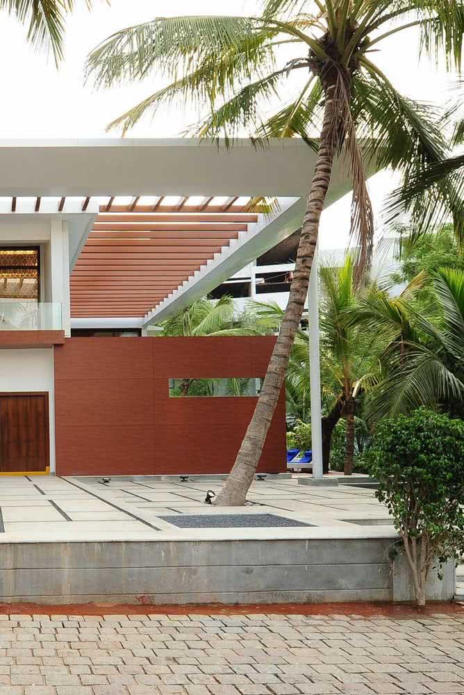 Fachada moderna valorizada pelo coqueiro de jardim
