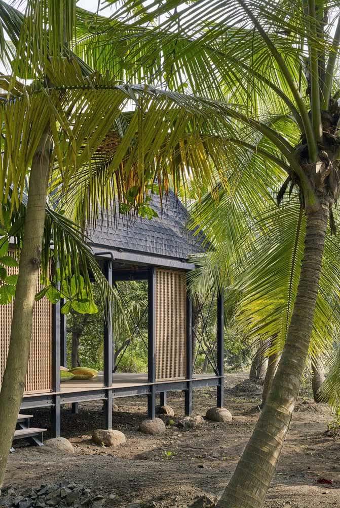 Uma cabaninha na praia cercada de coqueiros de jardim