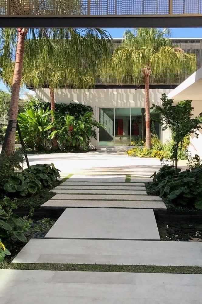Jardim tropical só fica completo com o coqueiro de jardim