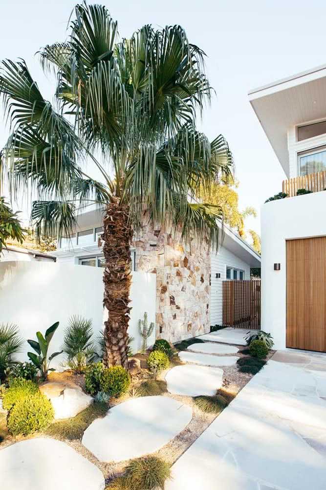 Aqui, um único coqueiro de jardim grande e majestoso foi o suficiente para o paisagismo da fachada