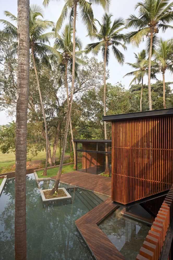 Coqueiros de jardim ou seriam coqueiros de piscina?