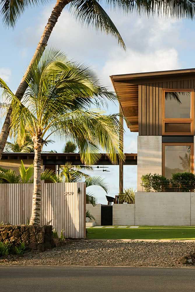 Coqueiro de jardim na casa de praia: planta obrigatória nesse tipo de projeto