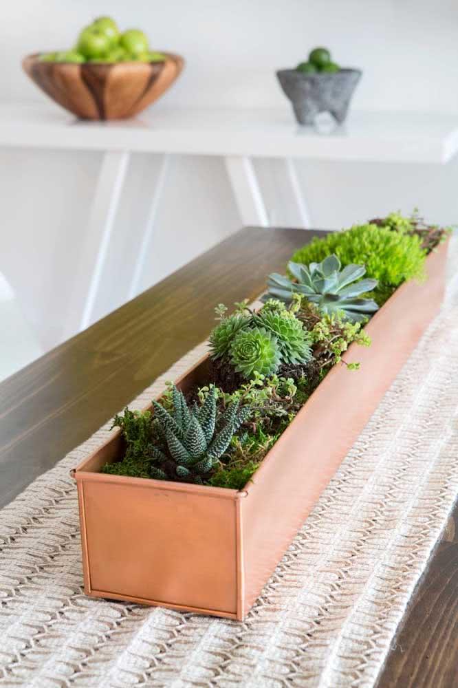 Vaso decorativo para suculentas decorando a mesa de jantar