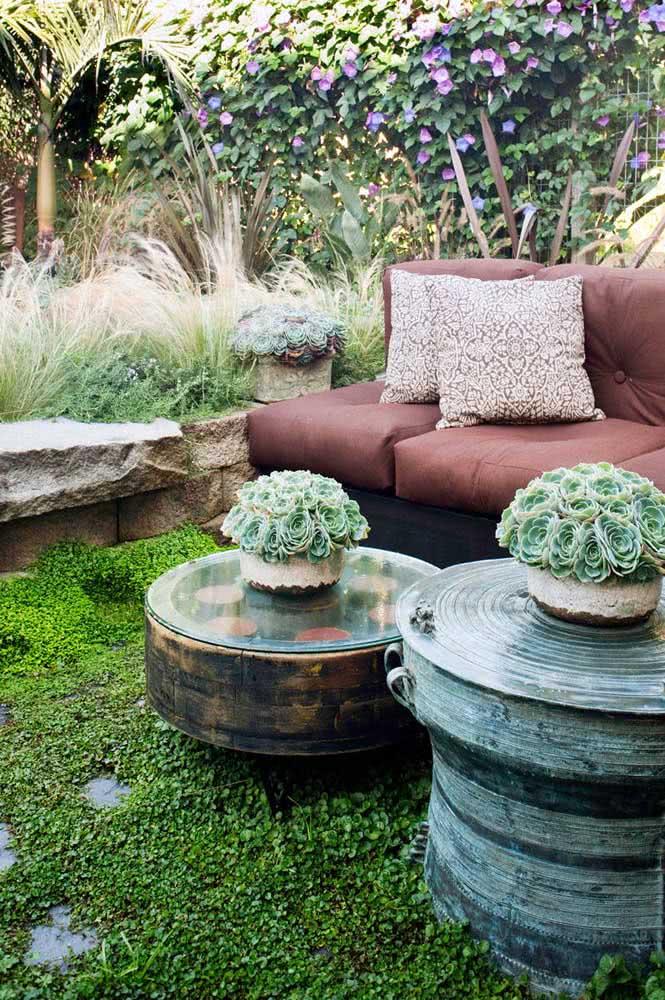 Vaso rústico para suculentas que decoram o jardim