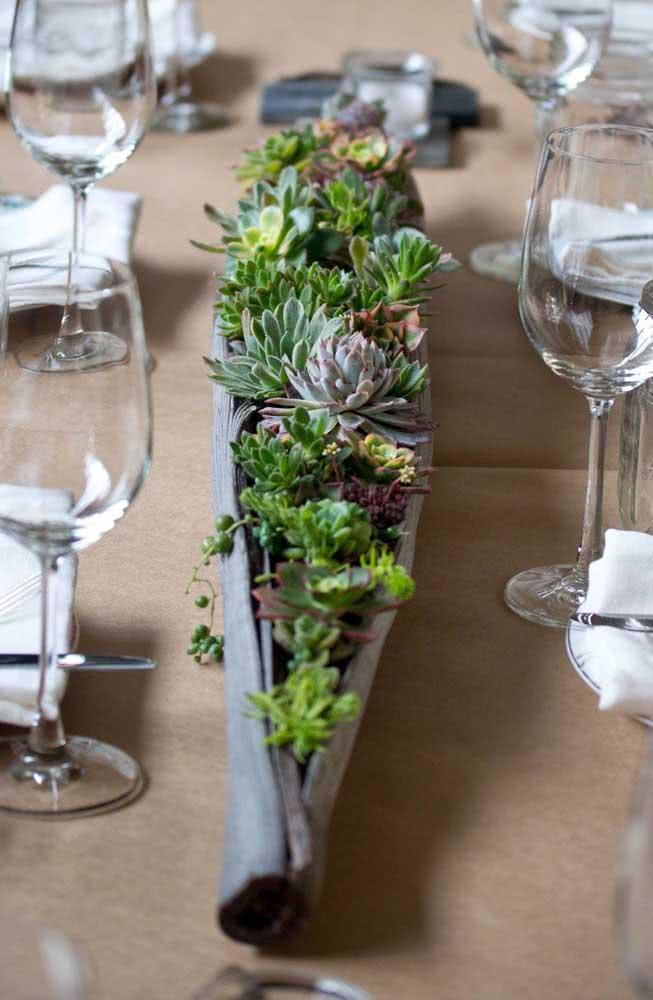 Aqui, o vaso criativo para suculentas foi feito com uma folha de coqueiro