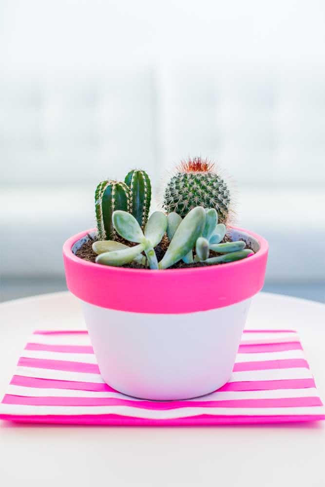 Que tal um vaso branco e pink para as suculentas?