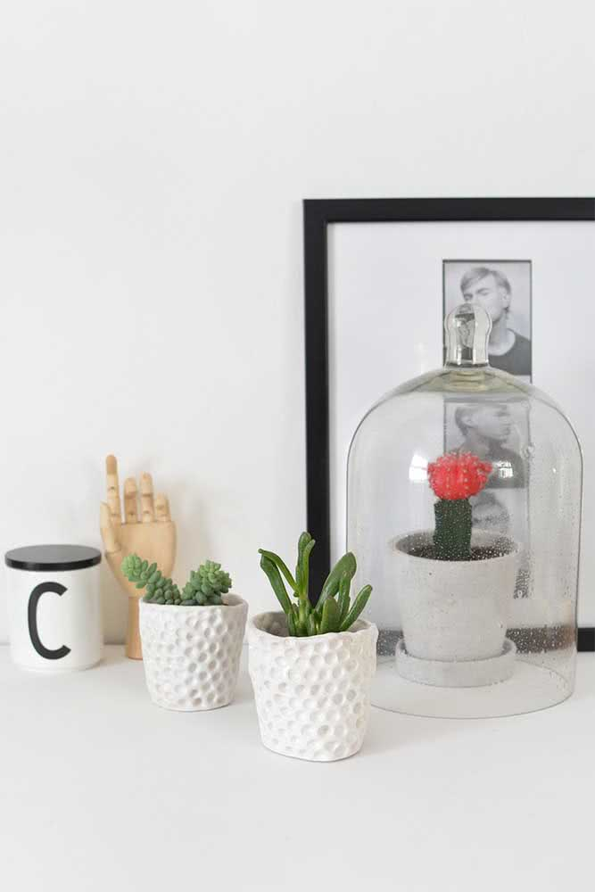 Vaso de cerâmica para suculentas combinando com o estilo minimalista da decoração