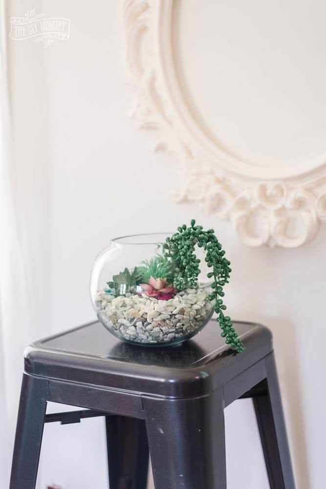 Vaso de vidro para suculentas: perfeito para um terrário