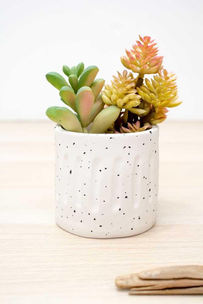 Vaso pequeno para suculentas. Quando a planta crescer, basta mudar o vaso