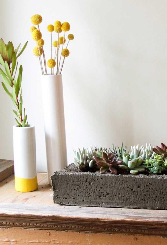 Vaso de cimento para suculentas super rústico que pode ser feito por você mesmo