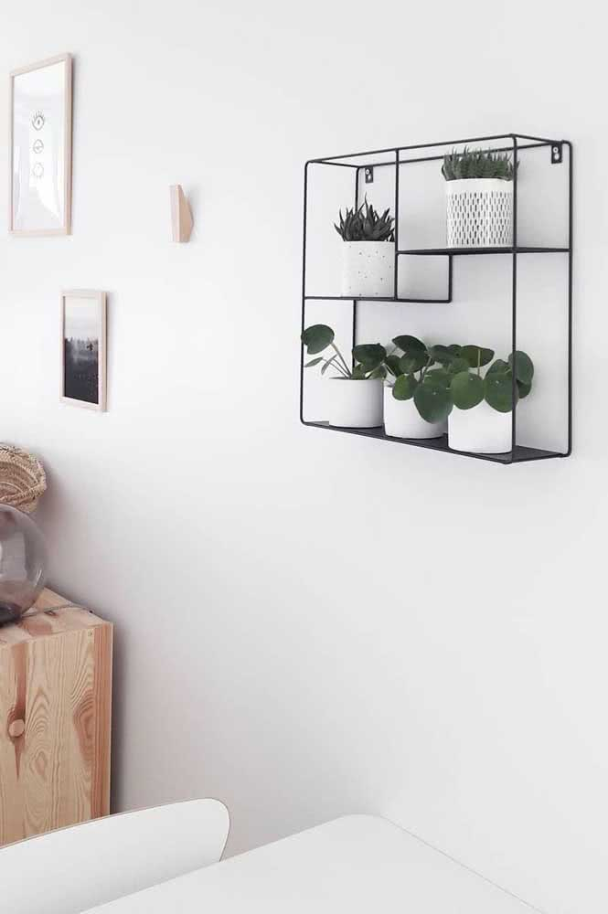 A clássica visão da planta Pilea em um ambiente moderno e minimalista