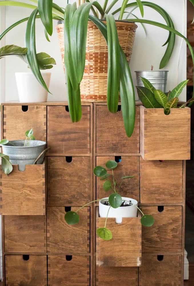 Arrume um jeito criativo de expor a Pilea e suas companheiras verdes