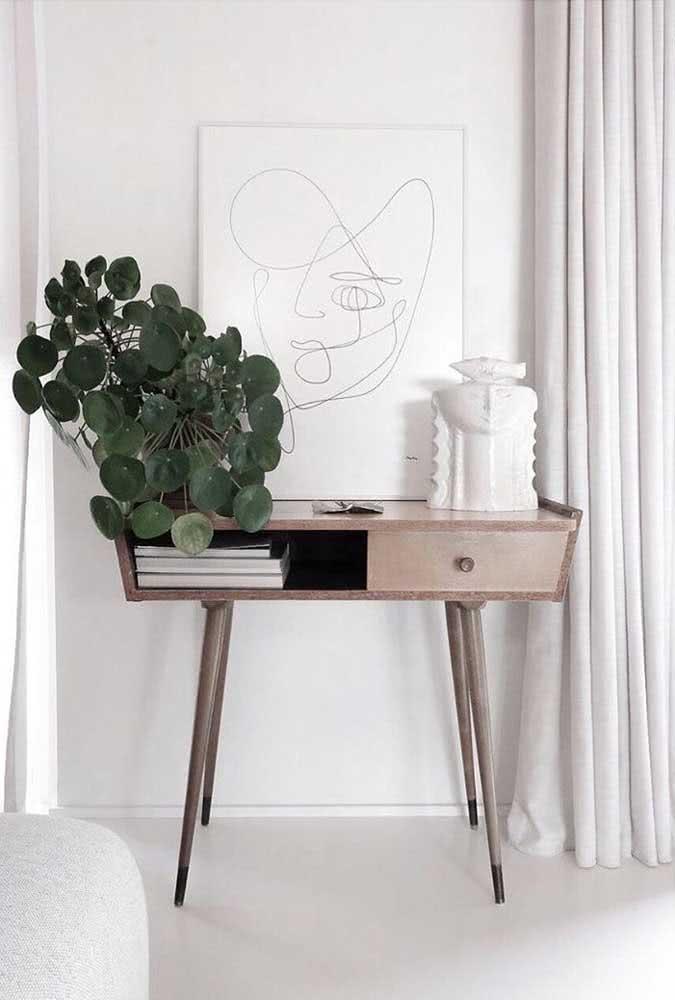 Tem uma parede branca na sua casa? Então valorize-a com um vaso incrível de pilea peperomioides