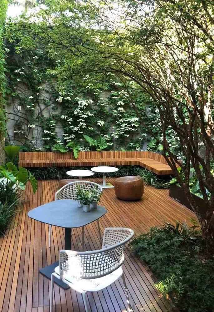 O muro do quintal te incomoda? Revista-o com plantas trepadeiras. Olha o visual!