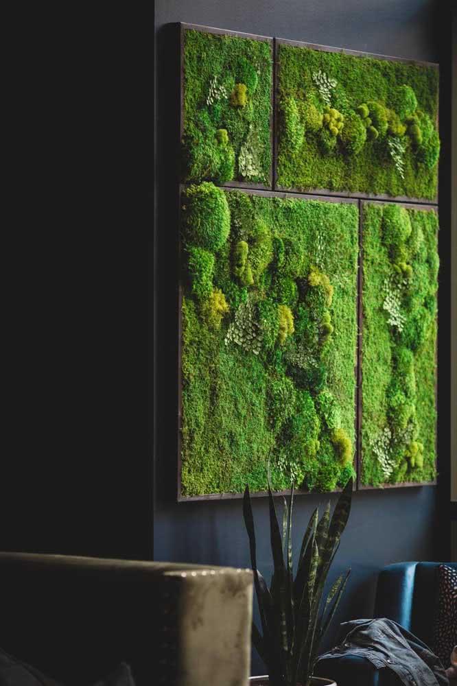 Dica de plantas para o jardim vertical artificial: musgos e gramíneas