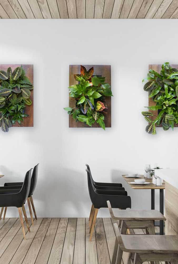 Quadros em formato de jardim vertical