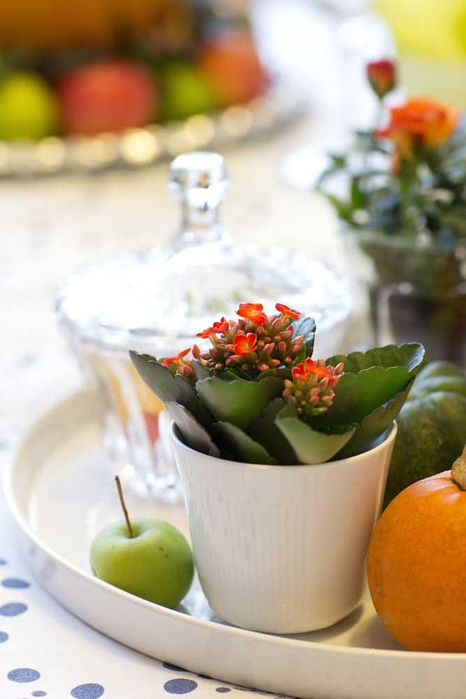 Flor da fortuna laranja dividindo espaço com as frutas
