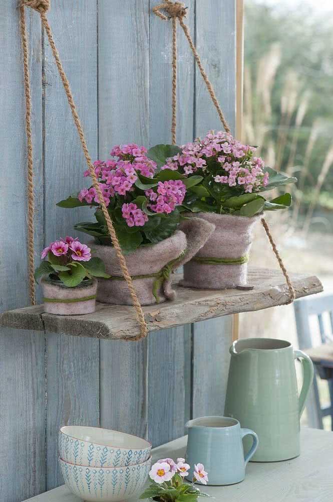 A rusticidade sempre combina com a suculenta flor da fortuna