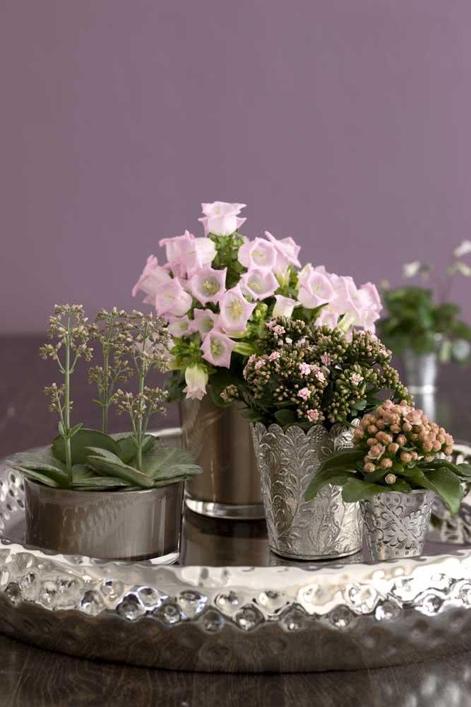 Uma prataria para receber a flor da fortuna