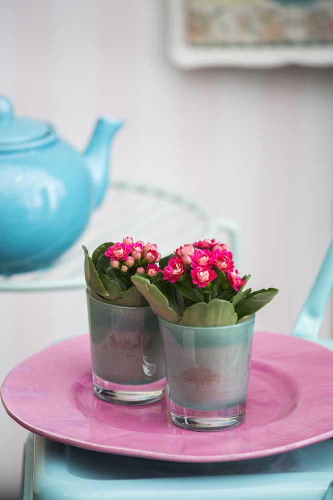 Mini flor da fortuna pink