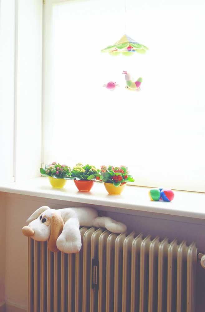 No parapeito da janela, a mini flor da fortuna decora o quarto infantil