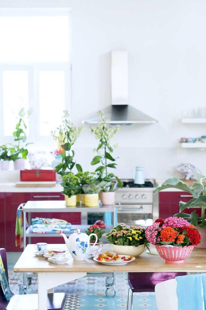 Uma cozinha descontraída combina com o quê? Flor da fortuna vermelha e laranja