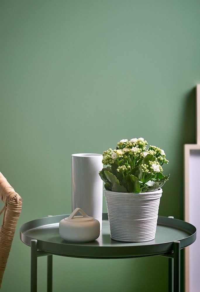 Flor da fortuna branca discreta e elegante na mesa lateral da sala