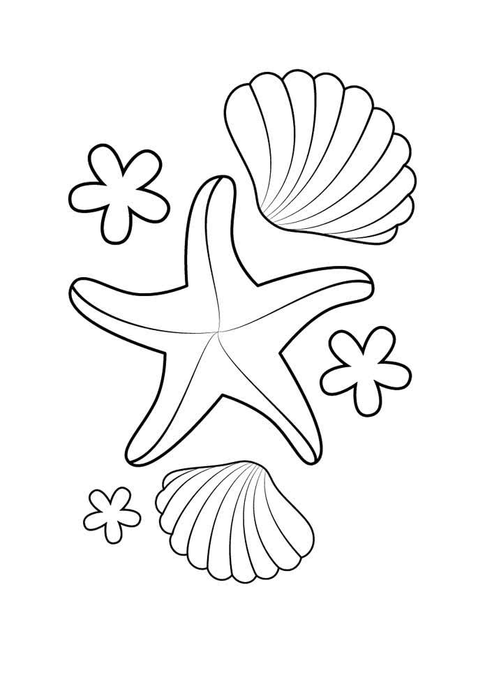 Molde de estrela do mar para aquela festinha temática que você está planejando