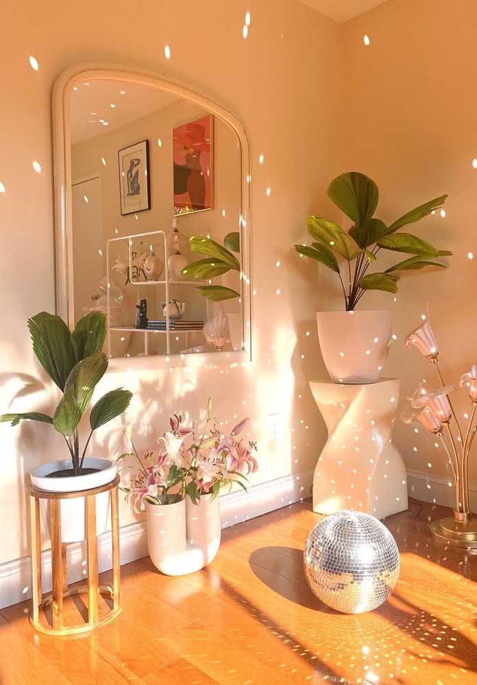 A luz difusa é perfeita para a palmeira leque